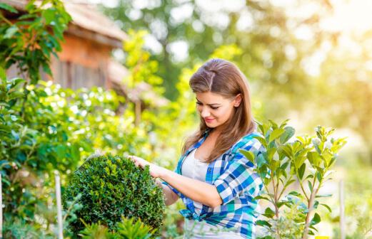 Gardener-Gallery-image-5