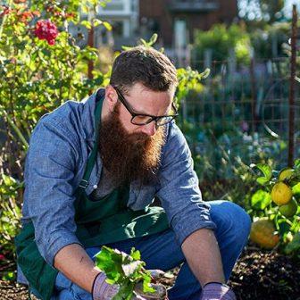 gardener-masonry-7